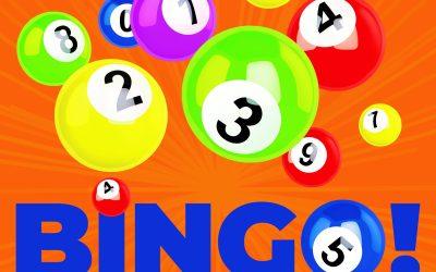 Bingo's Back in 2022